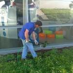 pulizie-industiali-civili-giardinaggio-pulizia-tetti-sondrio-milano-belotti-servizi
